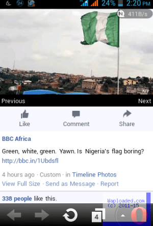 See Reaction Of Africans When BBC Said Nigeria Flag Is Boring